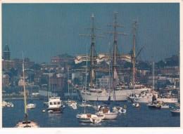 Maine Portland Summer Activity In The Harbor - Portland