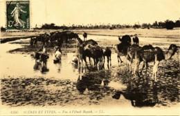 CPA ANIMEE 6105 SCENES ET TYPES - Vie De L'Oued  Bayech Dromadaires - Algérie