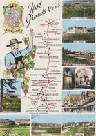 Cartolina - La Via Dei Vini Della Borgogna - Altre Collezioni