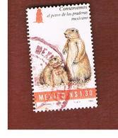 MESSICO (MEXICO) -  SG 2203  - 1994  ANIMALS: MEXICAN PRAIRIE DOG -  USED° - Messico