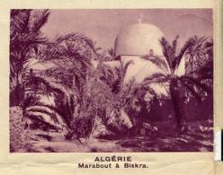 Chromo, Image, Vignette : Algérie, Marabout à Biskra (6 Cm Sur 7 Cm) - Unclassified