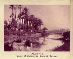 Chromo, Image, Vignette : Algérie, Oasis Et Rivière De Colomb Bechar (6 Cm Sur 7 Cm) - Unclassified