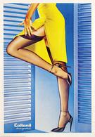 @@@ MAGNET - Collonil Europolish - Advertising