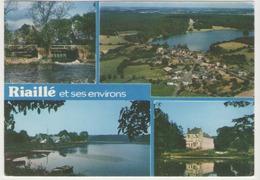 Cpm 44 Riaille - Multi Vue - Tampon De Riaillé - France