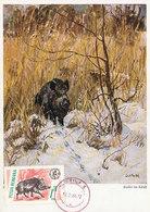 D35032 CARTE MAXIMUM CARD 1966 ROMANIA - WILD BOAR SANGLIER WILDSCHWEIN CP ORIGINAL - Gibier