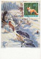D35033 CARTE MAXIMUM CARD 1966 POLAND - FOX RENARD FUCHS CP ORIGINAL - Game