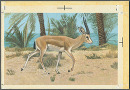 "Bahrain: 1982, Bahrain. Artist's Drawing For The Second 100f Value Of The Set ""Al-Areen Wildlife Par - Bahrain (1965-...)"