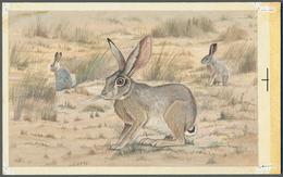 "Bahrain: 1982, Bahrain. Artist's Drawing For The Fourth 100f Value Of The Set ""Al-Areen Wildlife Par - Bahrain (1965-...)"