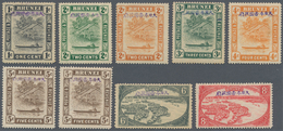 Brunei: 1942/44, Violet Overprint: Basic Set W. 1 C., 2 C. (both), 3 C., 4 C., 5 C. (two, Normal And - Brunei (1984-...)