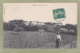 OCTON  MAS DES CARLES - France