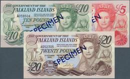 Falkland Islands / Falkland Inseln: Set Of 3 SPECIMEN Banknotes Containing 5 Pounds 1983 P. 12s, 10 - Falkland Islands