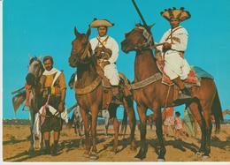 452-Folklore-Usi E Costumi-Animali-Militaria-Cavalieri Armati-Cavalli-Tunisia - Africa