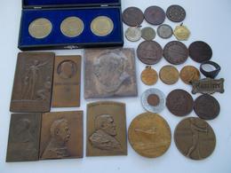 Medaillen Alle Welt: Ein Lot Bestehend Aus Plaketten (überwiegend Aus Ungarn) Z.B. Vom Telcs Ede - V - Tokens & Medals
