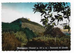 MONTESENARIO - PANORAMA DA PONENTE - NV FG - Firenze