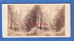 Photo Ancienne Stéréo Avant Ou Vers 1900 - GRANDE CHARTREUSE - Vue De Saint Pierre - Photographe Margain Jaeger Grenoble - Foto