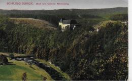 AK 0033  Schloss Burgk Vom Vorderen Röhrensteig Aus - Verlag König Um 1921 - Schleiz
