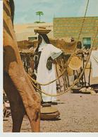 471-Folklore-Usi E Costumi-Tipi-Religione-Mercati-Etiopia - Africa
