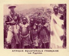 Chromo, Image, Vignette : Afrique Equatoriale Française, Les Pygmées (6 Cm Sur 7 Cm) - Unclassified