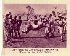 Chromo, Image, Vignette : Afrique Equatoriale Française, Chasse Au Lion à Am Dafok (6 Cm Sur 7 Cm) - Unclassified