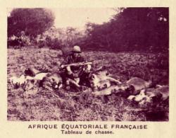 Chromo, Image, Vignette : Afrique Equatoriale Française, Tableau De Chasse (6 Cm Sur 7 Cm) - Unclassified