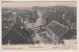 Kapellen (windmolen Panorama Westkant) Uitg. Hoelen N 3269 - Kapellen