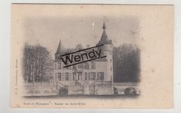 Wijnegem (kasteel Van Baron Gillès) - Wijnegem