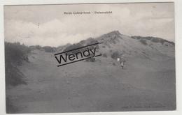 Heide-Calmpthout (duinenzicht) Uitg. Hoelen 4245 - Kalmthout