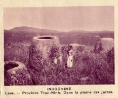 Chromo, Image, Vignette : Indochine, Laos, Province Tran-Ninh, Dans La Plaine Des Jarres (6 Cm Sur 7 Cm) - Unclassified