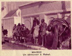 Chromo, Image, Vignette : Maroc, Un Abreuvoir à Rabat (6 Cm Sur 7 Cm) - Unclassified