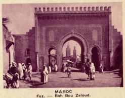 Chromo, Image, Vignette : Maroc, Fez, Bab Bou Zeloud (6 Cm Sur 7 Cm) - Unclassified
