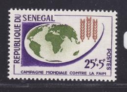 SENEGAL N°  216 ** MNH Neuf Sans Charnière, TB (D7572) Campagne Mondiale Contre La Faim - 1963 - Sénégal (1960-...)