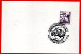 AUDI QUATTRO RALLY IN MITROPACUP 1984 - AUTO - SPECIAL CANCELL - Automobile