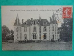 ENV. DE BILLOM : CHATEAU DES GUERINS - France