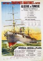 France Navigation Postcard S.G.T.M. Algérie Tunisie Sénégal Brésil Plata 1900 - Reproduction - Advertising