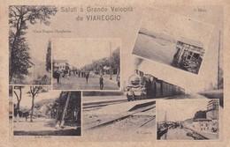 SALUTI A GRANDE VELOCITA DA VIAREGGIO / SAF / RARE ++ - Viareggio