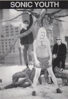 Célébrité :  Sonic  Youth - Chanteurs & Musiciens