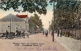 BULGARIE LOM HAUPTSTRASSE DONAU ZU (CARTE COLORISEE) - Bulgarien