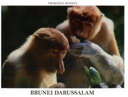 (777) Brunei Darrusalam - Probiscis Monkey - Brunei