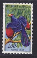 SENEGAL AERIENS N°   33 ** MNH Neuf Sans Charnière, TB (D7589) Faune, Oiseaux, Touraco Violet - 1960/63 - Sénégal (1960-...)