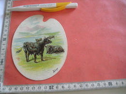 0689A  Liebig 689A 1 Trade Card -  RRR -  Types Of Cattle , KERRY Palette Shaped Cards LEMCO Litho Advertising Chromo - Liebig