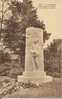 HALLE (1500) / HAL : Colonialisme - Monument Aux Coloniaux Hallois, Pionniers De L'Oeuvre Africaine. CPSM. - Halle