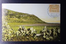 Palestine:  1913 Very Nice Nasre Datestamp On Turkish 5 Papra Stamp, Mount  Carmel - Palestine