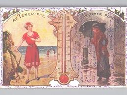TENERIFE In WINTER Advertising Art Nouveau Artist Postcard Colour Litho 1913 - Tenerife