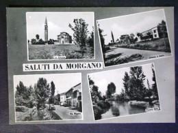 VENETO -TREVISO -MORGANO -F.G. - Treviso