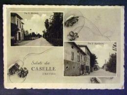 VENETO -TREVISO -CASELLE -F.G. - Treviso