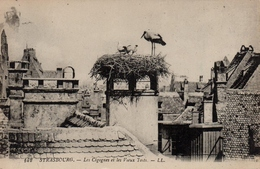 CPA 67 STRASBOURG Les Cigognes Et Les Vieux Toits - Straatsburg