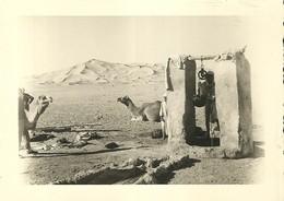 """1151 """"BEDUINI CON CAMMELLI AL POZZO DELL'ACQUA """"  FOTO ORIG. - Africa"""