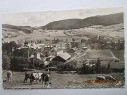 CP 25 PONTARLIER - Panorama La Chocotaterie Usine  Nestlé Kohler - Les Vaches Au Paturage - Pontarlier