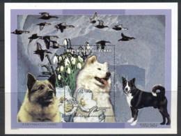 Chad 1998 Dogs, Samoyed MS MUH - Chad (1960-...)