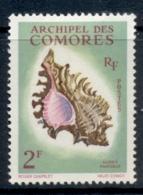 Comoro Is 1962 Shells 2f MLH - Comoros